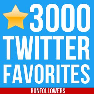 buy 3000-twitter-favorites