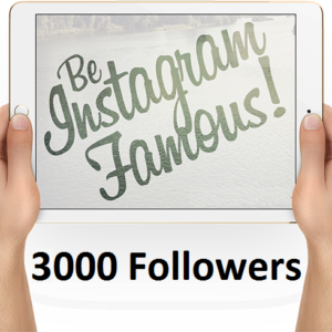 buy 3000 Instagram followers