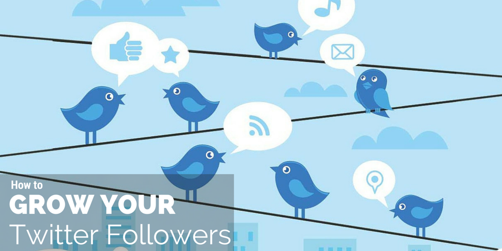 buy twitter-followers