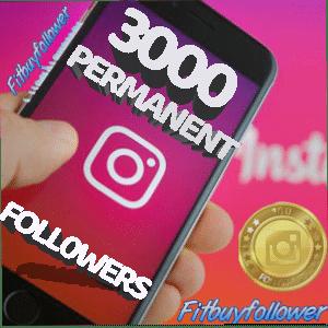 3000 Instagram Followers